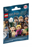 71022 LEGO® Harry Potter™ ir Fantastic Beasts™ 71022